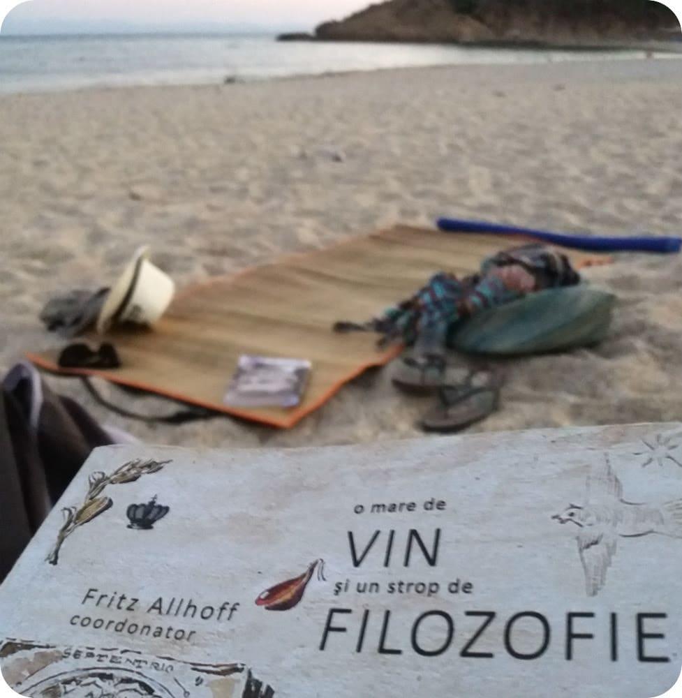 Gastronomie și lectură, adică mâncare, un vin și o carte bună pe nisipul de la mare (Guest post – Daniel Botea)